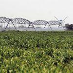 Balance hídrico en la Cuenca del Plata. Disponibilidad y usos, considerando escenarios futuros. Modelos de gestión