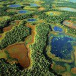 Ecosistemas acuáticos en la Cuenca del Plata