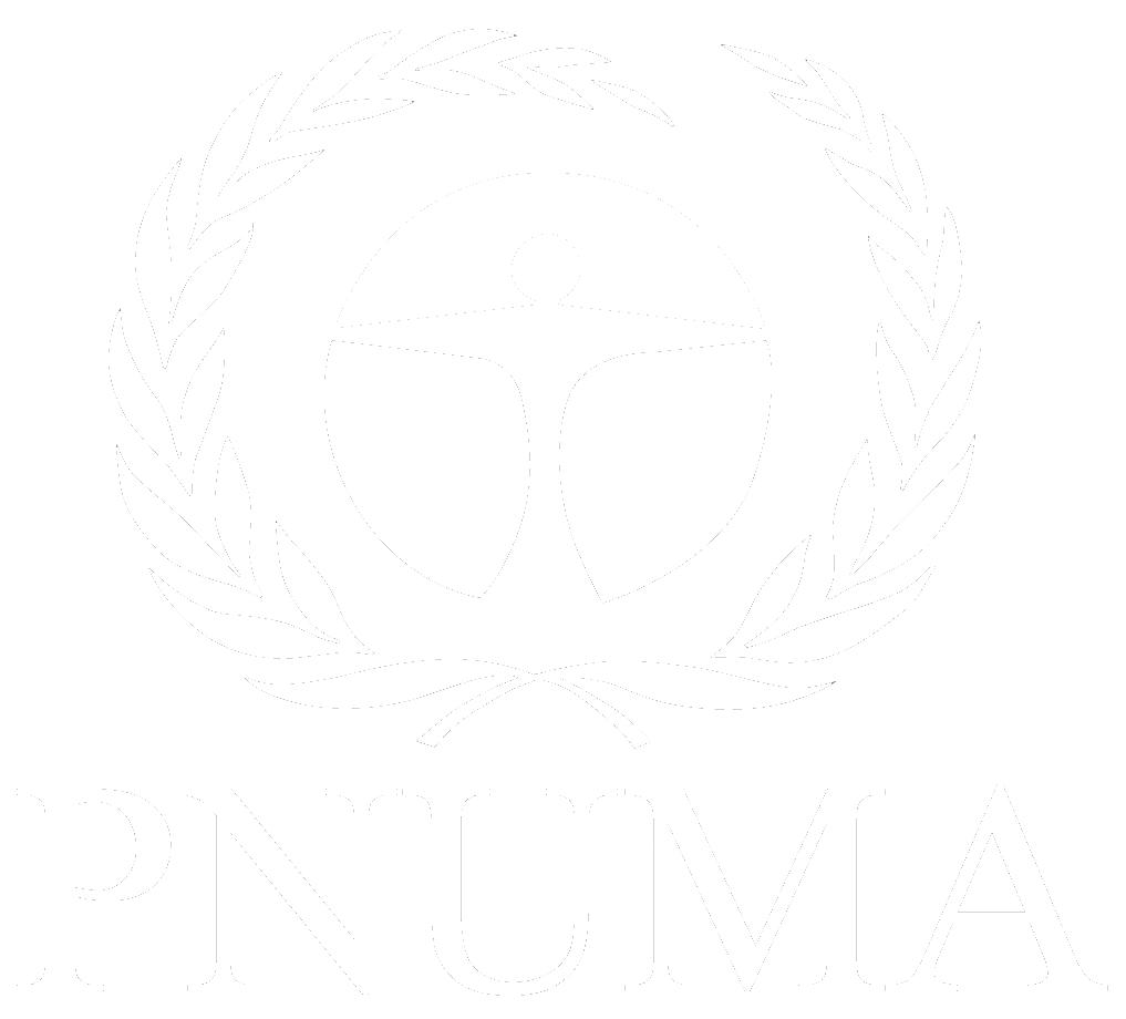 PNUMA